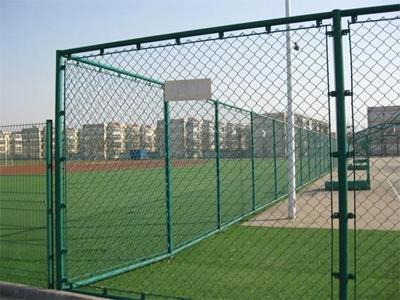 Chian link mesh
